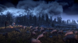 4 The Witcher 3 Wild Hunt Sheep