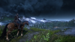 8 The Witcher 3 Wild Hunt Horse