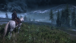NEW The Witcher 3 Wild Hunt Horse