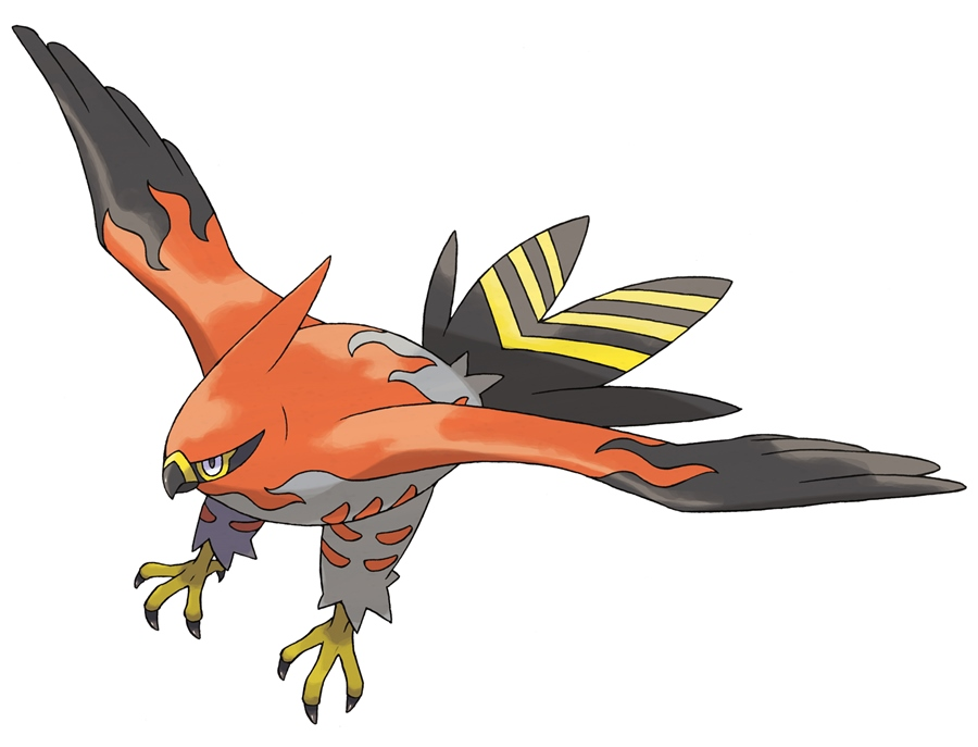 Talonflame1